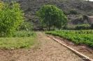 2 Ruta Ecológica Huerta del Taluvia