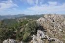 Pico Gallinero