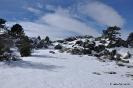 Senderismo con nieve_9