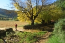 Villares Letur en otoño