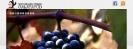 Vinos de Calatayud