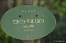 Tinto Velasco Benito
