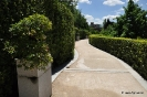 Bonsais Jardín Botánico de Madrid