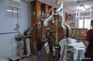 Panadería Rincón del Segura_6