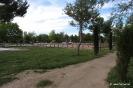 Parque de La Pulgosa_5