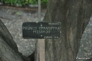 Pisardii Prunus cerasifera_1
