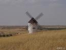 Molinos de viento Manchegos de Mota del Cuervo