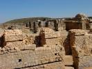 Valeria Yacimiento Arqueológico