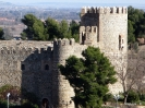 Toledo Capital