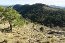 Almenara Pico
