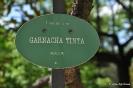Garnacha Tinta_1
