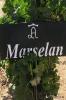 Marselan_1