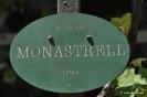 Monastrel_1
