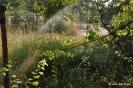 Riego aspersión en Jardines