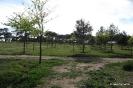 Parque de La Pulgosa_2