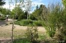 Parque de La Pulgosa_3