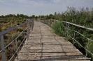 Jardín Botánico de Castilla-La Mancha
