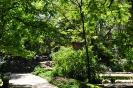 Jardín Botánico de Madrid